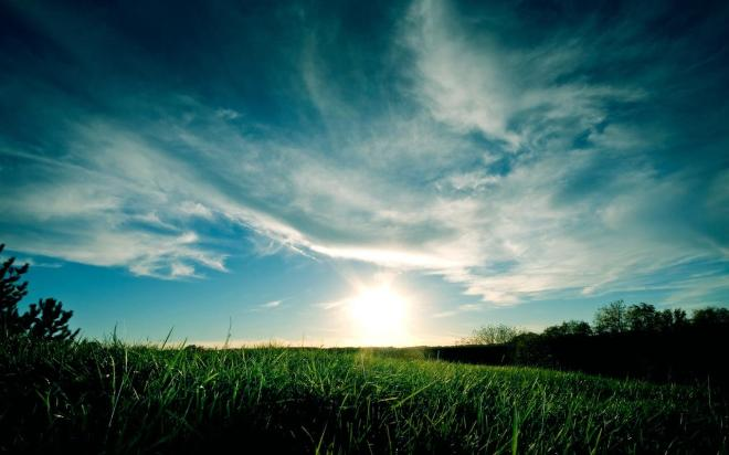 Grassy_Sunset_1280x800
